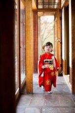 画像6: 【アンティーク着物】3歳女の子 古典柄 白雲 (6)