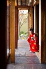 画像5: 【アンティーク着物】3歳女の子 古典柄 白雲 (5)