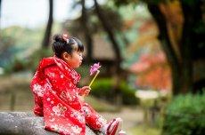 画像6: 被布レッド  【対応年齢】2歳6ヶ月〜3歳6ヶ月   【対応身長】85cm〜100cm (6)