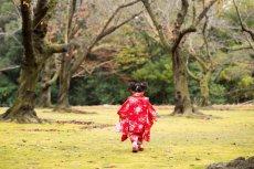 画像11: 被布レッド  【対応年齢】2歳6ヶ月〜3歳6ヶ月   【対応身長】85cm〜100cm (11)